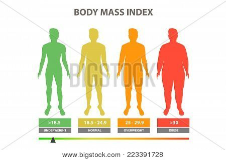 Body mass index vector illustration color. Scale mass index