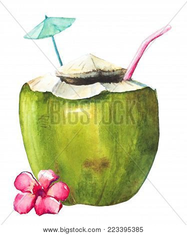 Watercolor hand drawn coconut cocktail with straw and pink tropical flower on white background