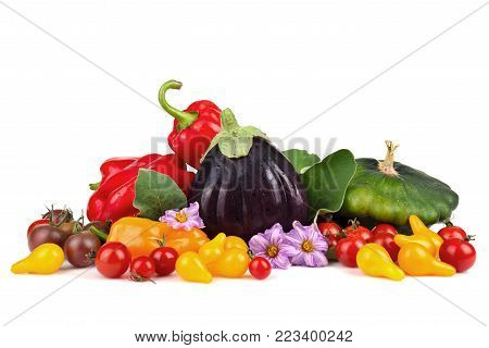 Group of ripe row autumn vegetables isolated on white background