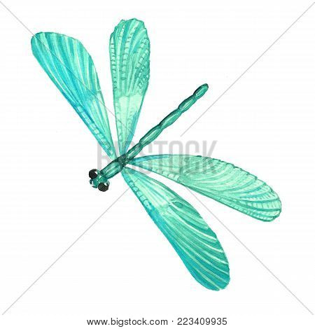Watercolor Image Of A Sitting Dragonfly.