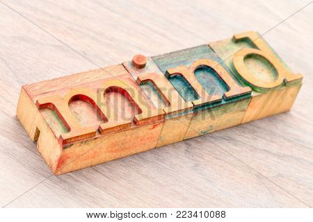 mind word abstract in letterprtess wood type blocks stained by color inks