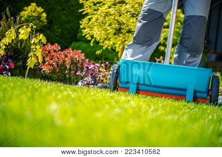 Spring Fertilization of Grass. Garden Works in Sunny Day