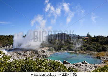 The World Famous Prince of Wales Feathers, Pohutu and Kereru geysers.