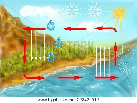 water cycle. schematic representation of the water cycle in nature poster