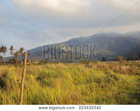 Nature in the mountains, beautiful scenery, beautiful mountain scenery, the Carpathian Mountains, a village in the mountains
