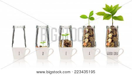 Gold coins and seed in five clear bottle over the glass with text good idea on white background,Business investment growth concept, 3D illustration