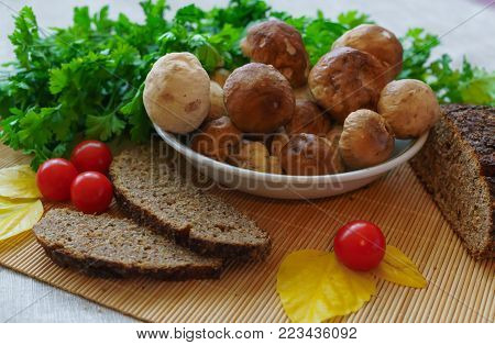 Boletus edulis.White mushrooms for homemade soup of mushrooms, with sour cream and black bread.