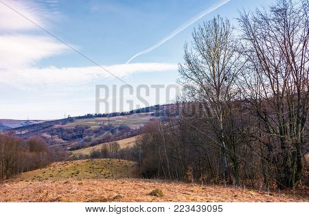 leafless forest on a meadow with weathered grass. lovely Carpathian countryside in springtime