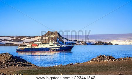 Blue antarctic cruise ship in the lagoon and Gentoo penguins colony on the shore of Barrientos island, South Shetland islands, Antarctic peninsula