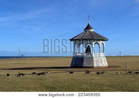 Ocean Park Gazebo, Oakes Bluff, Martha's Vineyard, Cape Cod, Massachusetts