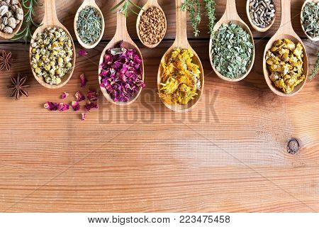 Herbs on spoons on a wooden background with copy space. Nasturtium, chamomile, horsetail, rose petals, fenugreek seeds, calendula, plantain, milk thistle seeds, mullein, alchemilla.