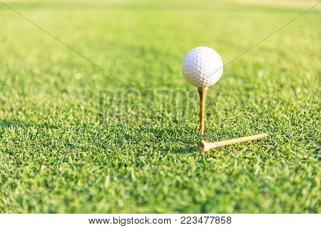Close-up of golf ball on grass.Golf ball on tee over a blurred green. Shallow depth of field. Focus on the ball.
