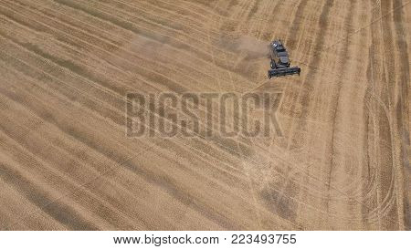 Fields of wheat and barley, the work of agricultural machinery. Harvesting barley harvesters. Combine harvesters and tractors.