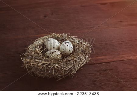 Quail Eggs In A Nest On A White Background. Top View. Flat Lay