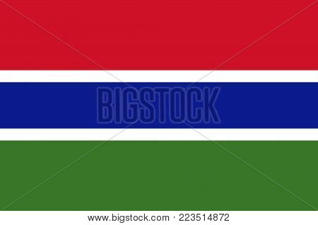 Flag of Gambia in national colors, vector