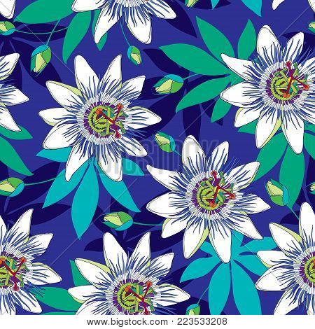 Vector seamless pattern with outline tropical Passiflora or Passion flowers in blue and white, bud and leaves on the blue background. Floral background in contour style for exotic summer design.
