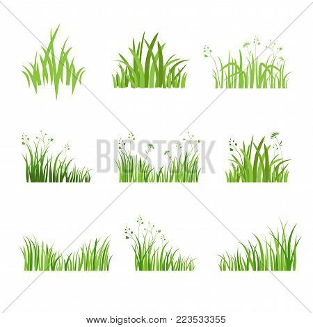 Grass icon. Silhouette of green plants for logo or sign. Eco style. Spring or summer seasonal illustration.