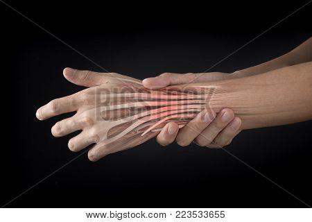 wrist muscle pain white background wrist pain