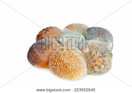 A photo of mold growing old bread with seeds isolated on white background. Food contamination, bad spoiled disgusting rotten wheat bread. Messthetics concept, food leftovers