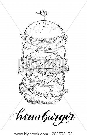 Linear drawing of a big burger with double cutlet. For design, packaging and cards