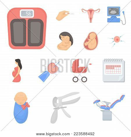 Woman and pregnancy cartoon icons in set collection for design. Gynecology and equipment vector symbol stock  illustration.