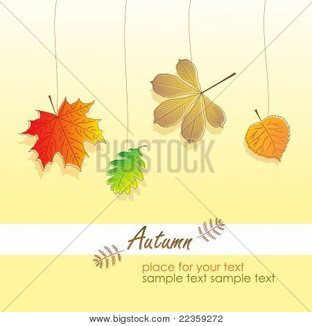 Leaves of Autumn, vector illustration