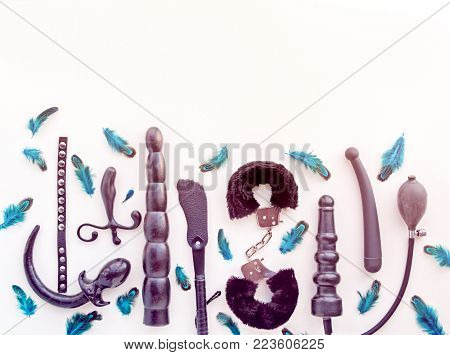Different sex toys: dildo, prostate massager, vibrator, anal plug, handcuffs and others. Objects are located on a light background with blue feathers