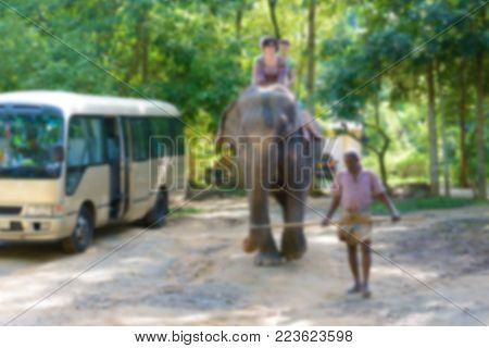 Blurred photo riding on elephant with guide.