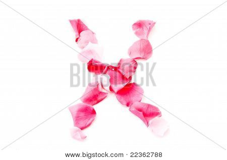 Pink Petal Letter - Capital X