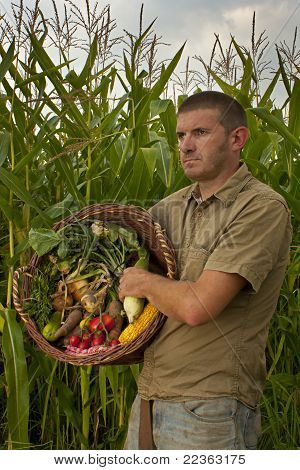 Male Farmer With A Mixed Harvest