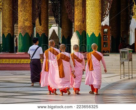 Yangon, Myanmar - Feb 26, 2016. Buddhist Nuns Walk At Shwedagon Pagoda In Yangon, Myanmar. The Pagod