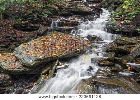 Whitewater splashes down Ganoga Glen in Pennsylvania's Ricketts Glen State Park on a rainy autumn day.