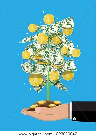 Money tree in hand. Growing money tree. Investment, investing. Gold coins and dollar banknotes on branches. Symbol of wealth. Business success. Flat style vector illustration.