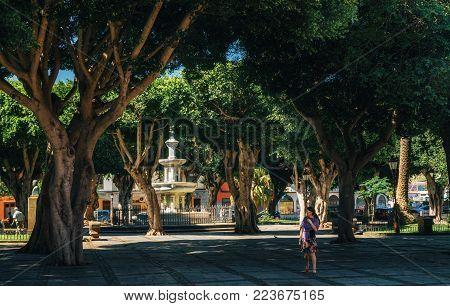 La Laguna, Tenerife, Canary islands, Spain - May 23, 2017: Adelantado Square in lush greenery and powerful trees with fountain in San Cristobal de La Laguna town in Tenerife, Canary islands, Spain