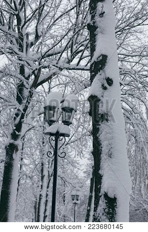 Photo of a winter park with large snowdrifts, trees and a street lamp