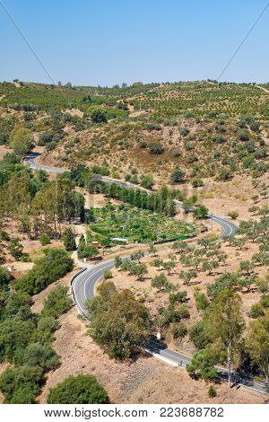 The writhing road winding among olive orchards on the hills near Mertola city. Baixo Alentejo. Portugal