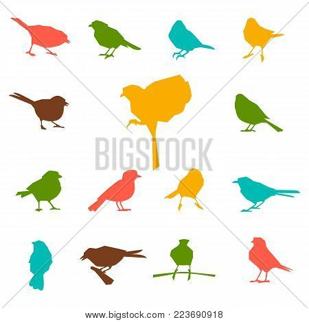 Set Of Silhouettes Of Birds. Feathered In Black Color Isolated On White Background.