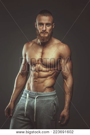Strong muscular man with beard isolated on grey background.
