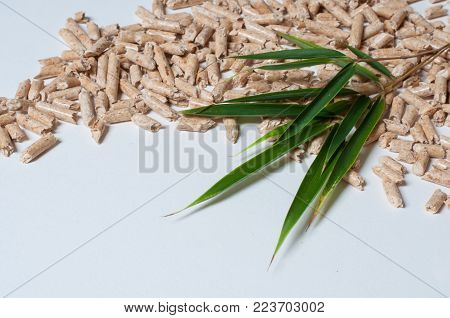 Wood pellets and green Leaves with copy space. Green energy concept.