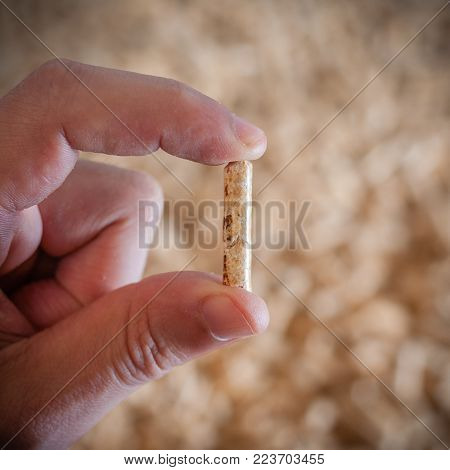 Hand showing wood pellets for heating. Selective focus. Square composition.