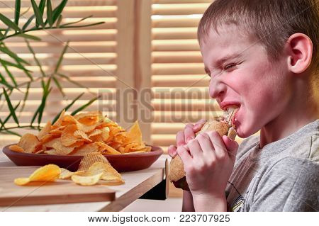 Boy with appetite is eating a delicious hot dog.  Hungry child willingly tears his teeth and chews hotdog.  Dish with chips on the background of wooden shutters on the window. Fast food.