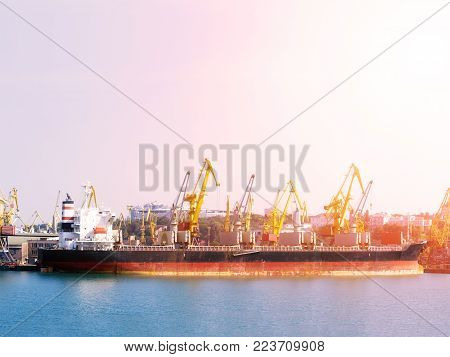 Bulk carrier ship in the port on loading. Bulk cargo ship under port crane bridge. Panorama of the port cranes ships.
