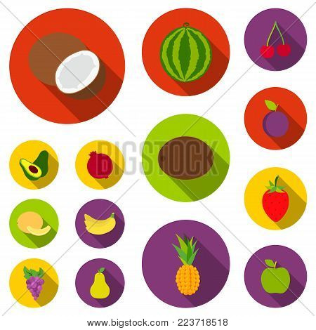 Different fruits flat icons in set collection for design. Fruits and vitamins vector symbol stock  illustration.