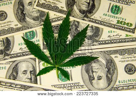 Cannabis leaf on heap of the hundred dollar bills