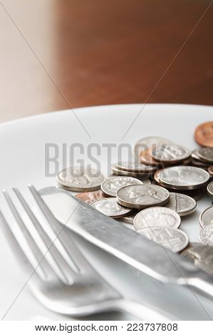Plate of food money concept with nobody.