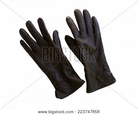 women warm clothing for women. beautiful leather gloves to protect your hands from the cold. color photograph for registration of design