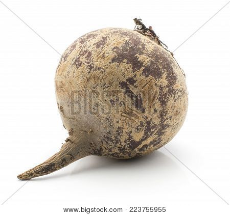 One beetroot bulb (raw red beet) isolated on white background