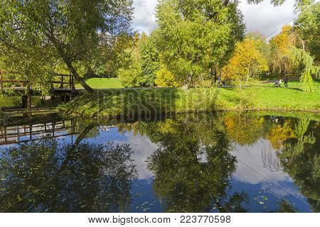 Reflection Of Coastal Trees In The Water Surface Of The Pond.
