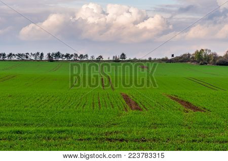 Beautiful Green Field With Wooden Watchtower On Horizon
