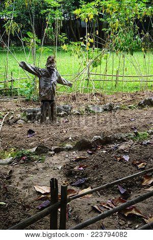 Primitive rustic scarecrow in rural Vietnamese garden vertical figure